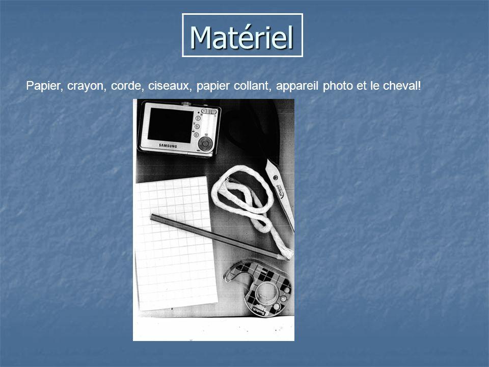 Matériel Papier, crayon, corde, ciseaux, papier collant, appareil photo et le cheval!