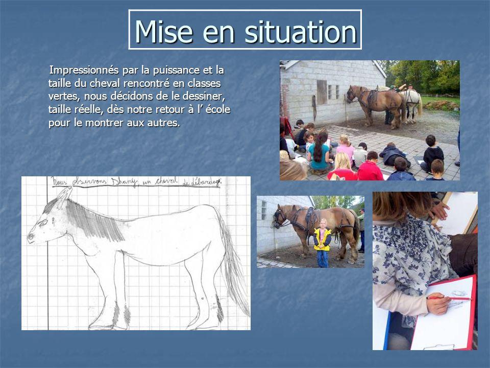 Mise en situation Impressionnés par la puissance et la taille du cheval rencontré en classes vertes, nous décidons de le dessiner, taille réelle, dès notre retour à l école pour le montrer aux autres.