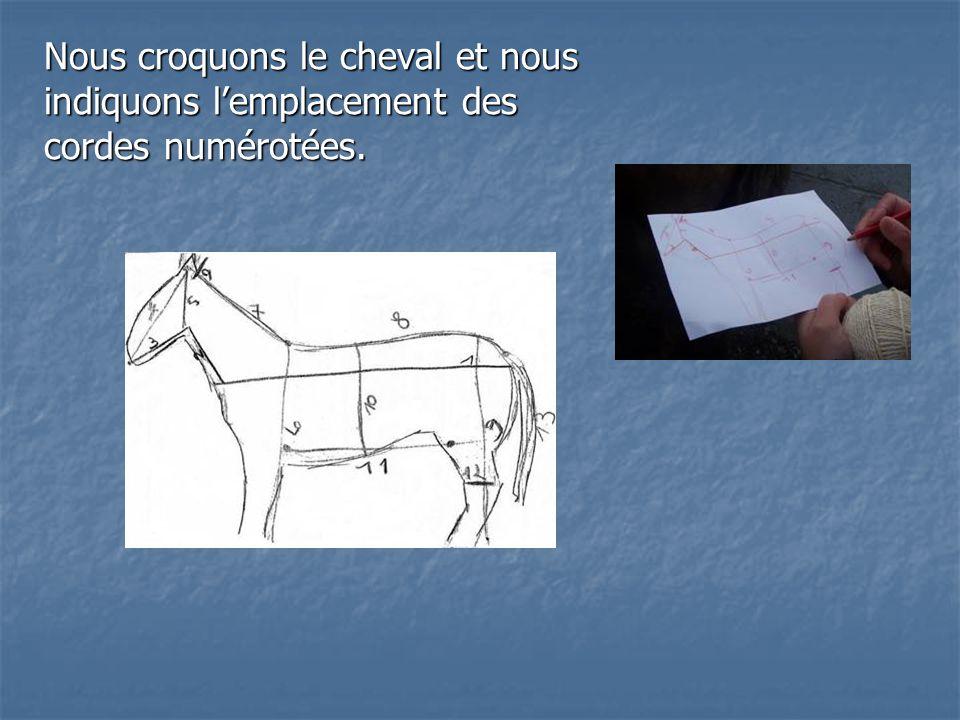 Nous croquons le cheval et nous indiquons lemplacement des cordes numérotées.