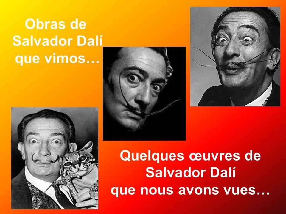 Obras de Salvador Dalí que vimos… Quelques œuvres de Salvador Dalí que nous avons vues…