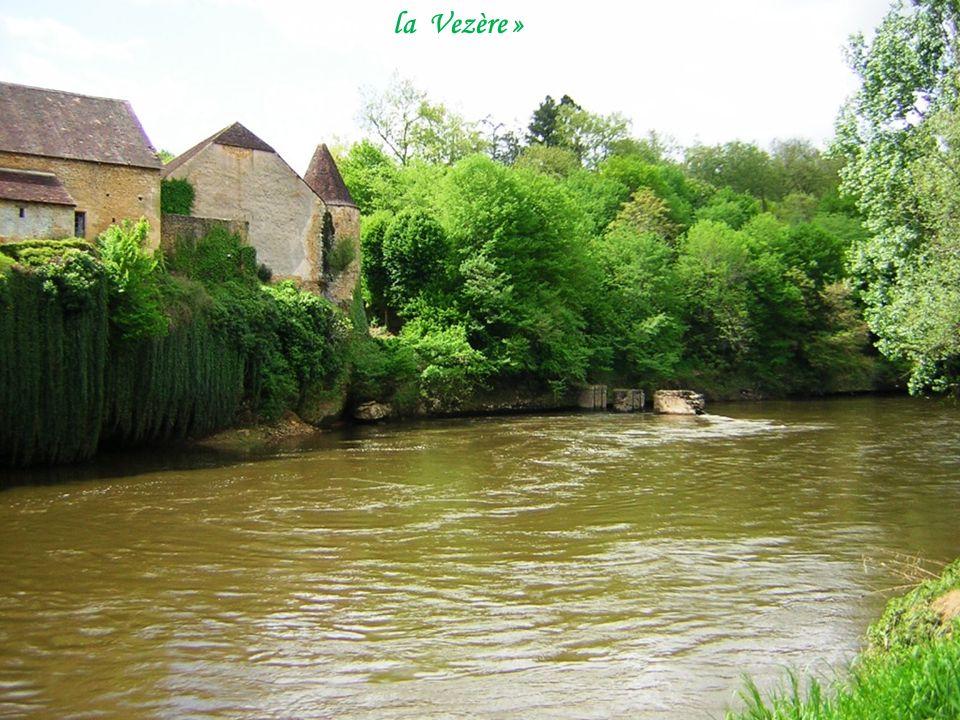 Rivière « la Vezère »