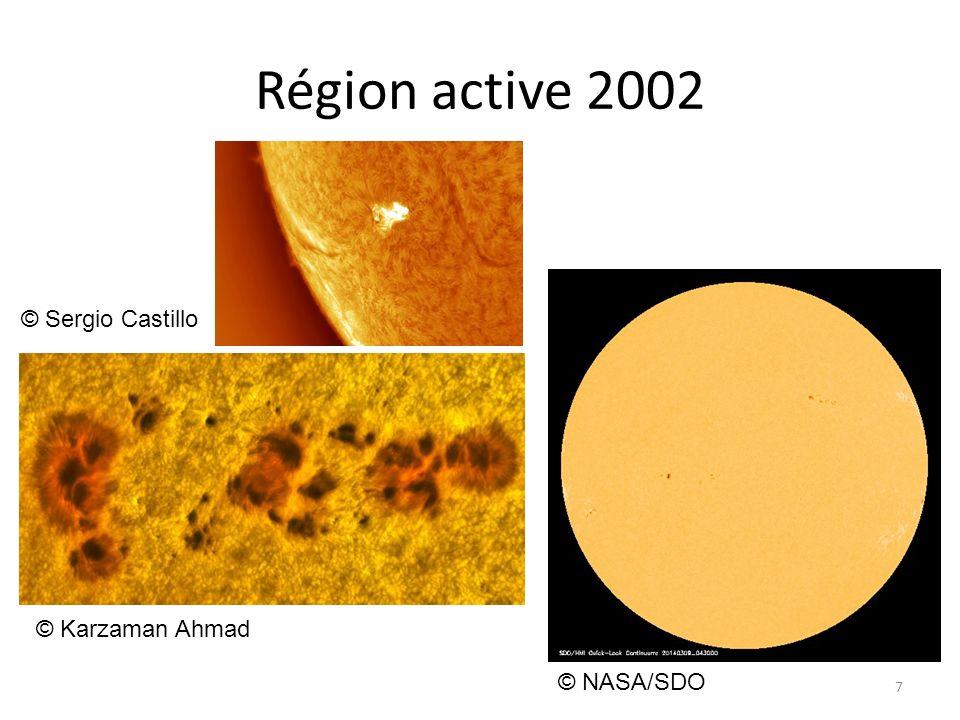 Région active 2002 7 © Karzaman Ahmad © NASA/SDO © Sergio Castillo