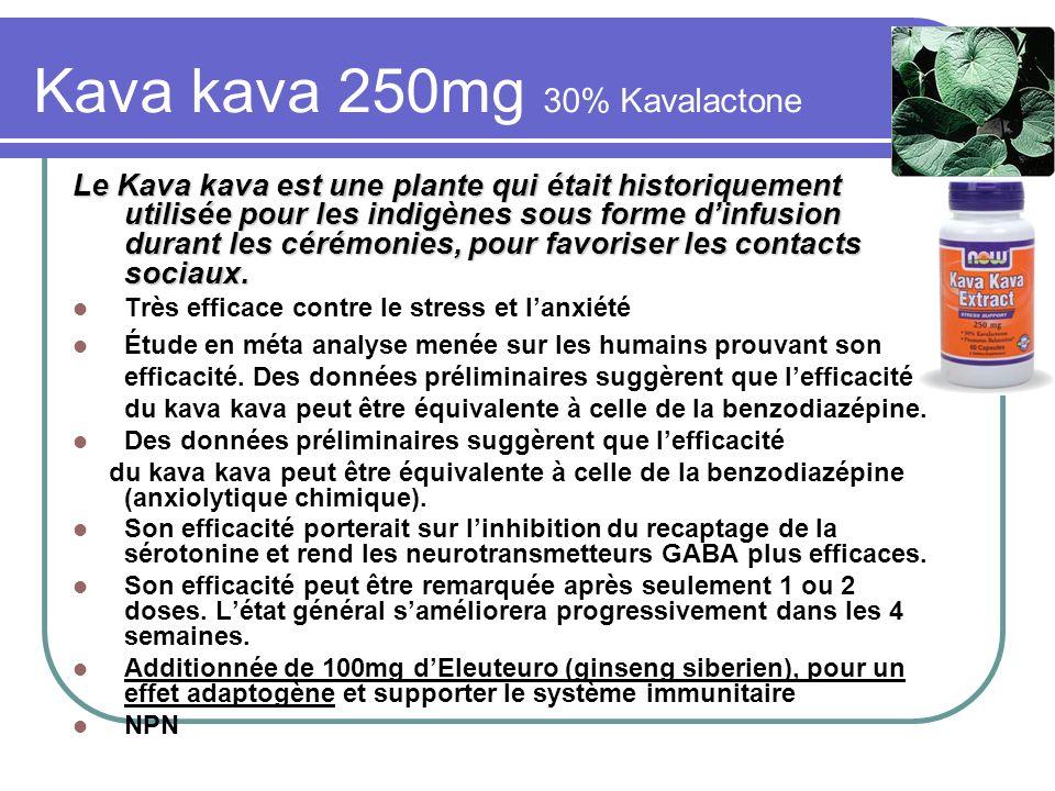 Kava kava 250mg 30% Kavalactone Le Kava kava est une plante qui était historiquement utilisée pour les indigènes sous forme dinfusion durant les cérém