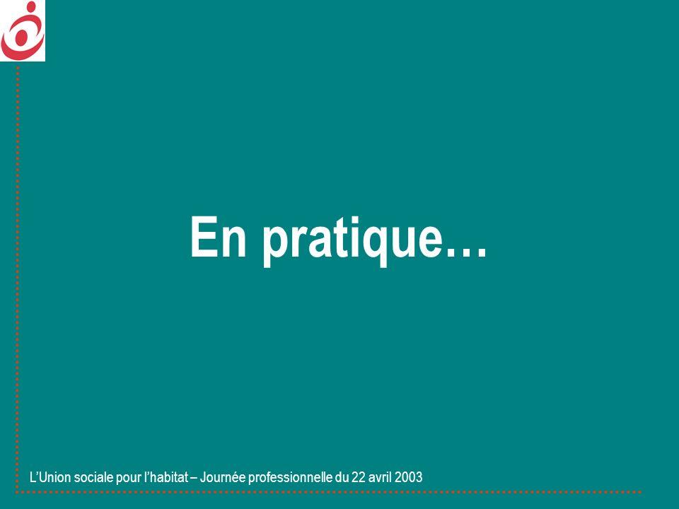 En pratique… LUnion sociale pour lhabitat – Journée professionnelle du 22 avril 2003