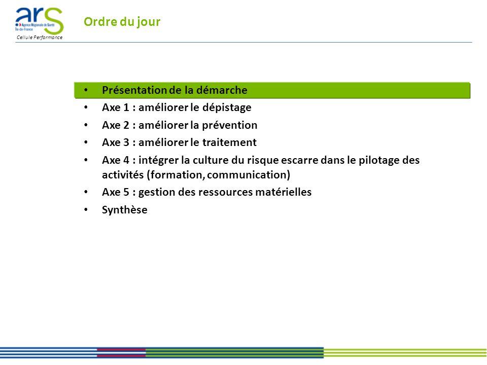 Cellule Performance Ordre du jour Présentation de la démarche Axe 1 : améliorer le dépistage Axe 2 : améliorer la prévention Axe 3 : améliorer le traitement Axe 4 : intégrer la culture du risque escarre dans le pilotage des activités (formation, communication) Axe 5 : gestion des ressources matérielles Synthèse