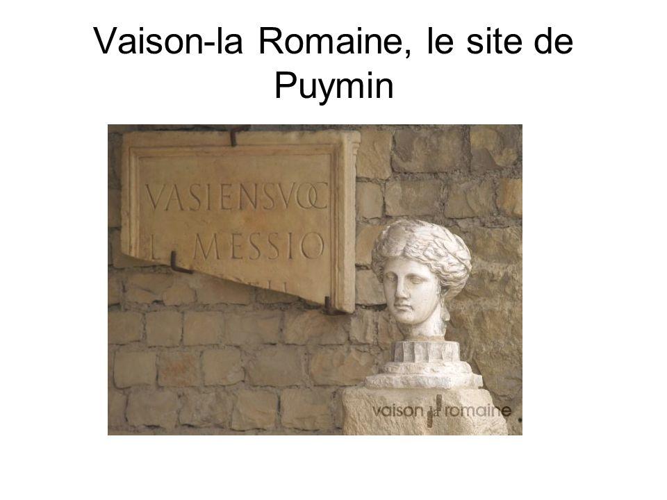 Vaison-la Romaine, le site de Puymin