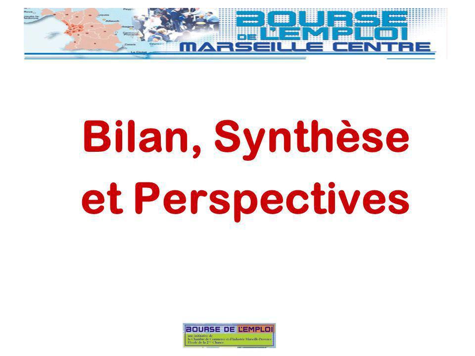 Bilan, Synthèse et Perspectives