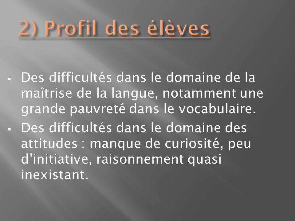 Des difficultés dans le domaine de la maîtrise de la langue, notamment une grande pauvreté dans le vocabulaire. Des difficultés dans le domaine des at