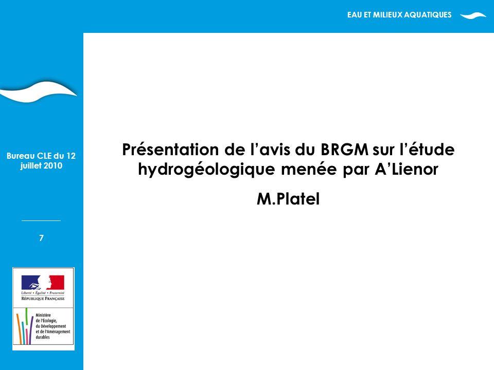 EAU ET MILIEUX AQUATIQUES 7 Bureau CLE du 12 juillet 2010 Présentation de lavis du BRGM sur létude hydrogéologique menée par ALienor M.Platel