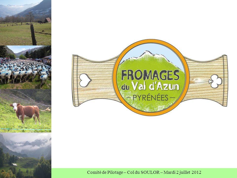 Comité de Pilotage – Col du SOULOR – Mardi 2 juillet 2012