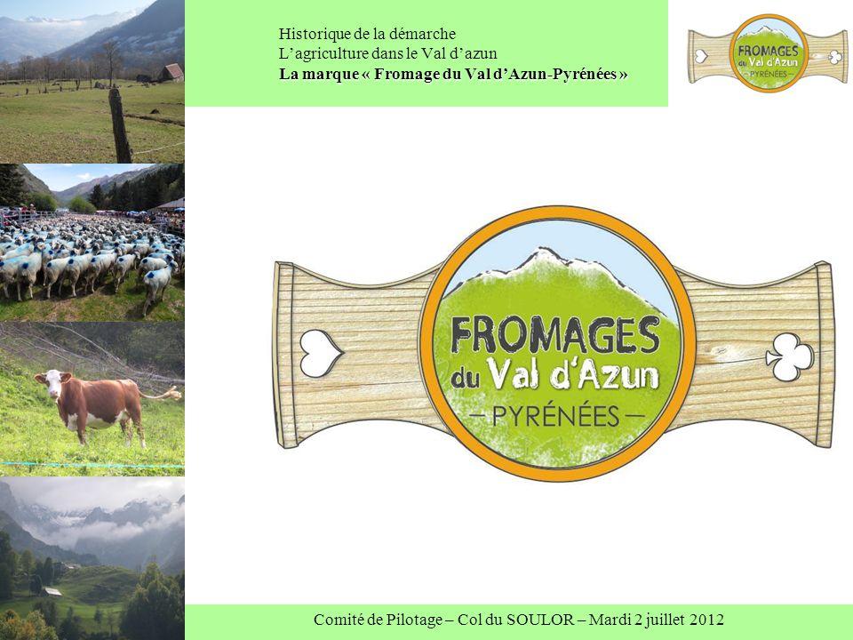 Comité de Pilotage – Col du SOULOR – Mardi 2 juillet 2012 La marque « Fromage du Val dAzun-Pyrénées » Historique de la démarche Lagriculture dans le Val dazun La marque « Fromage du Val dAzun-Pyrénées »