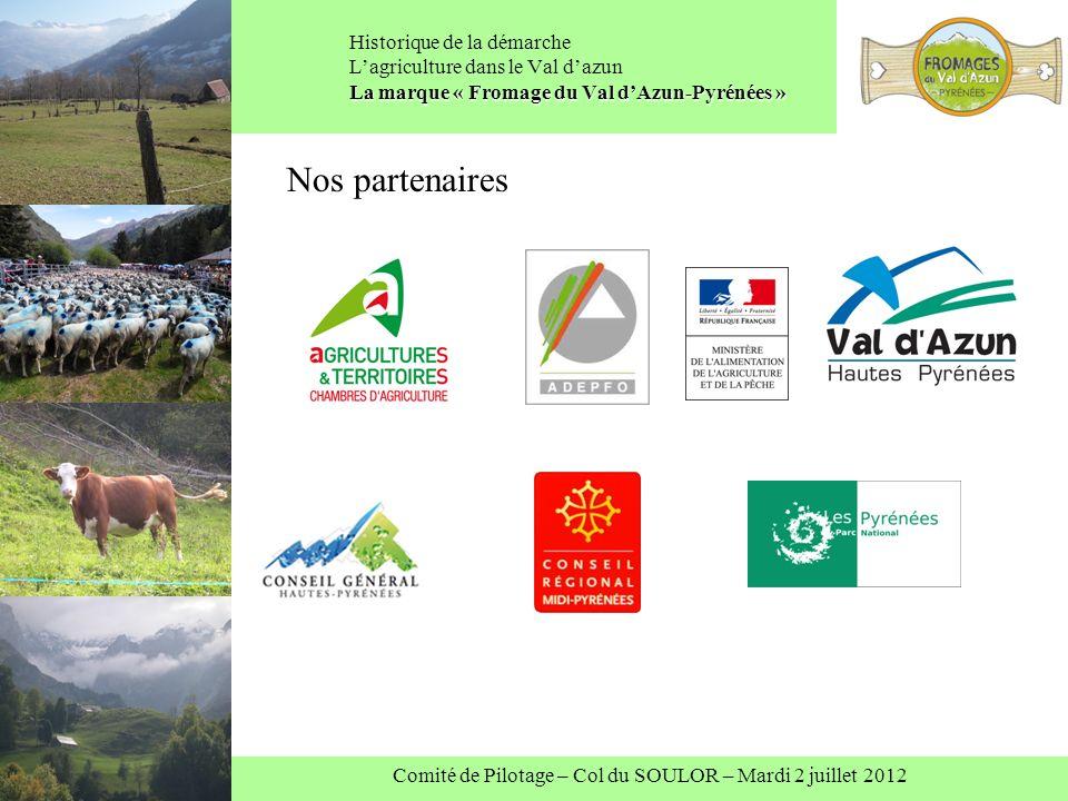 Comité de Pilotage – Col du SOULOR – Mardi 2 juillet 2012 La marque « Fromage du Val dAzun-Pyrénées » Historique de la démarche Lagriculture dans le Val dazun La marque « Fromage du Val dAzun-Pyrénées » Nos partenaires