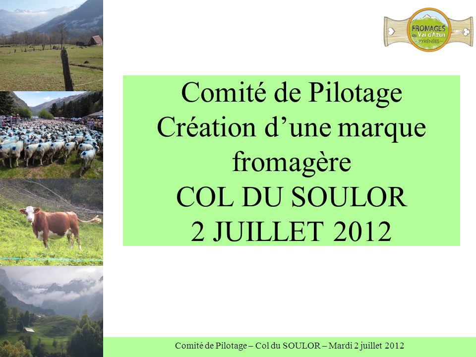 Comité de Pilotage Création dune marque fromagère COL DU SOULOR 2 JUILLET 2012