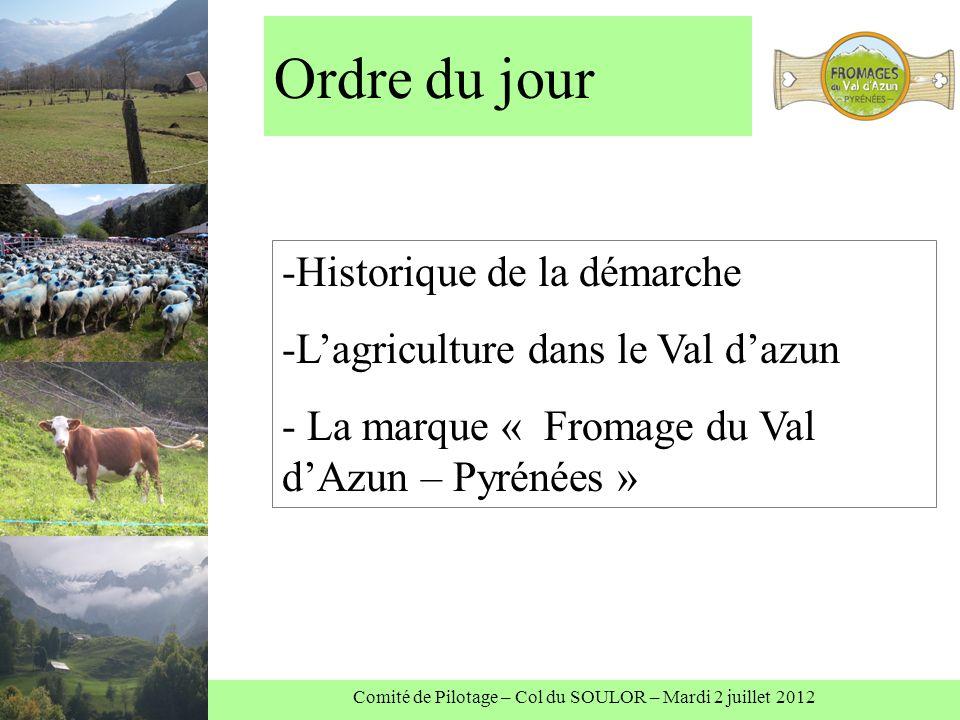 Comité de Pilotage – Col du SOULOR – Mardi 2 juillet 2012 Ordre du jour -Historique de la démarche -Lagriculture dans le Val dazun - La marque « Fromage du Val dAzun – Pyrénées »