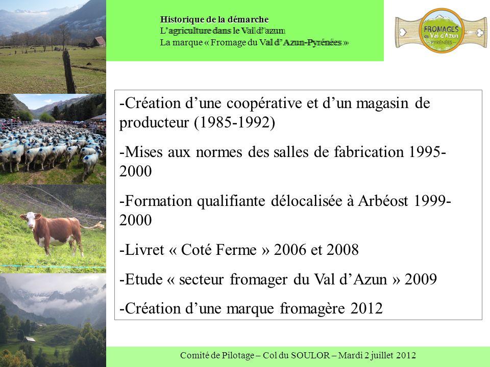 Comité de Pilotage – Col du SOULOR – Mardi 2 juillet 2012 Historique de la démarche Historique de la démarche Lagriculture dans le Val dazun La marque
