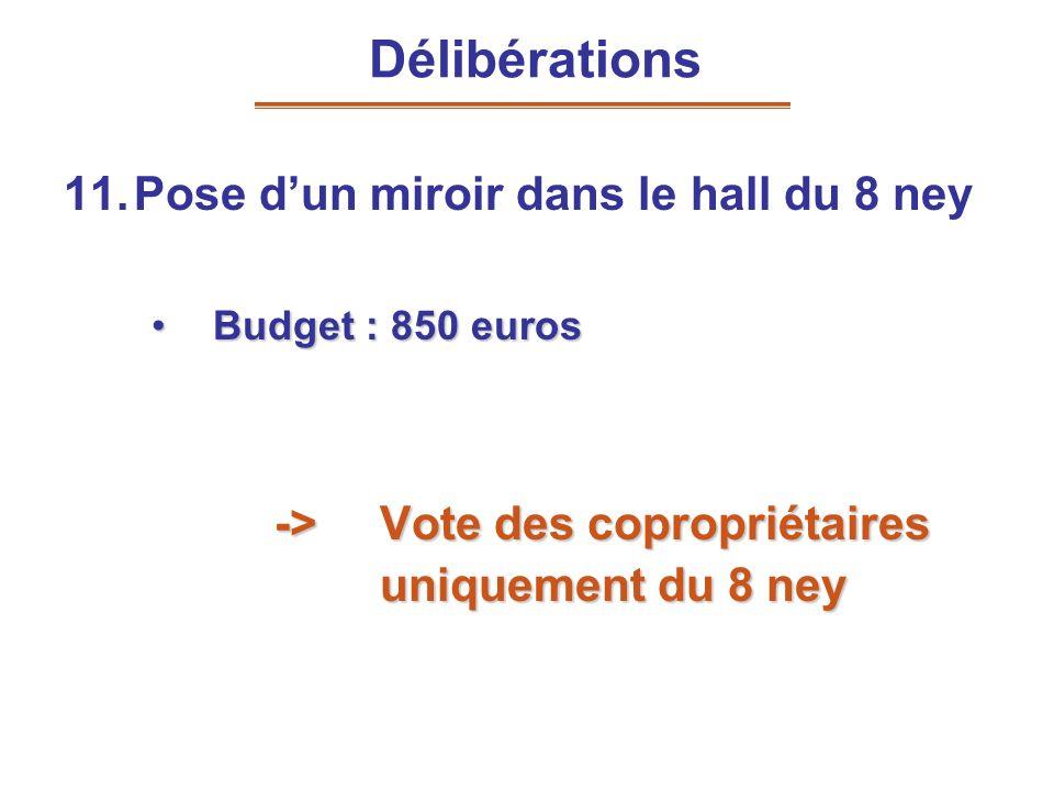 11.Pose dun miroir dans le hall du 8 ney Budget : 850 eurosBudget : 850 euros -> Vote des copropriétaires uniquement du 8 ney Délibérations