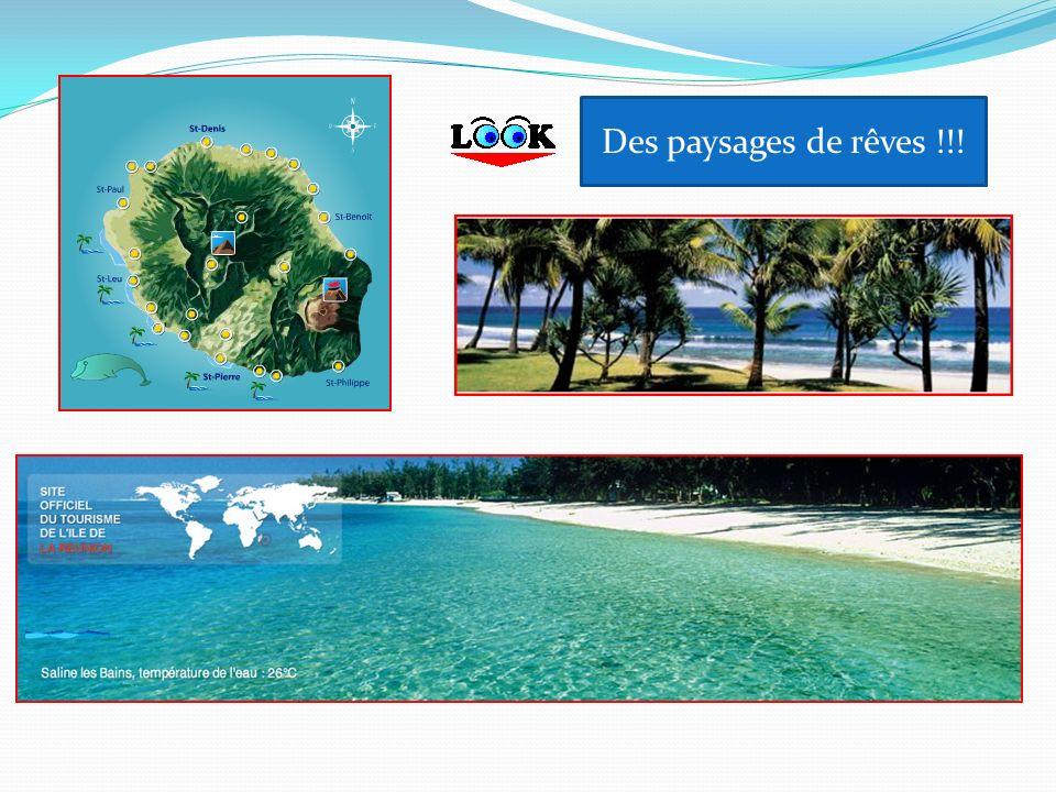 La Réunion cest aussi des compétitions dathlétisme !!!