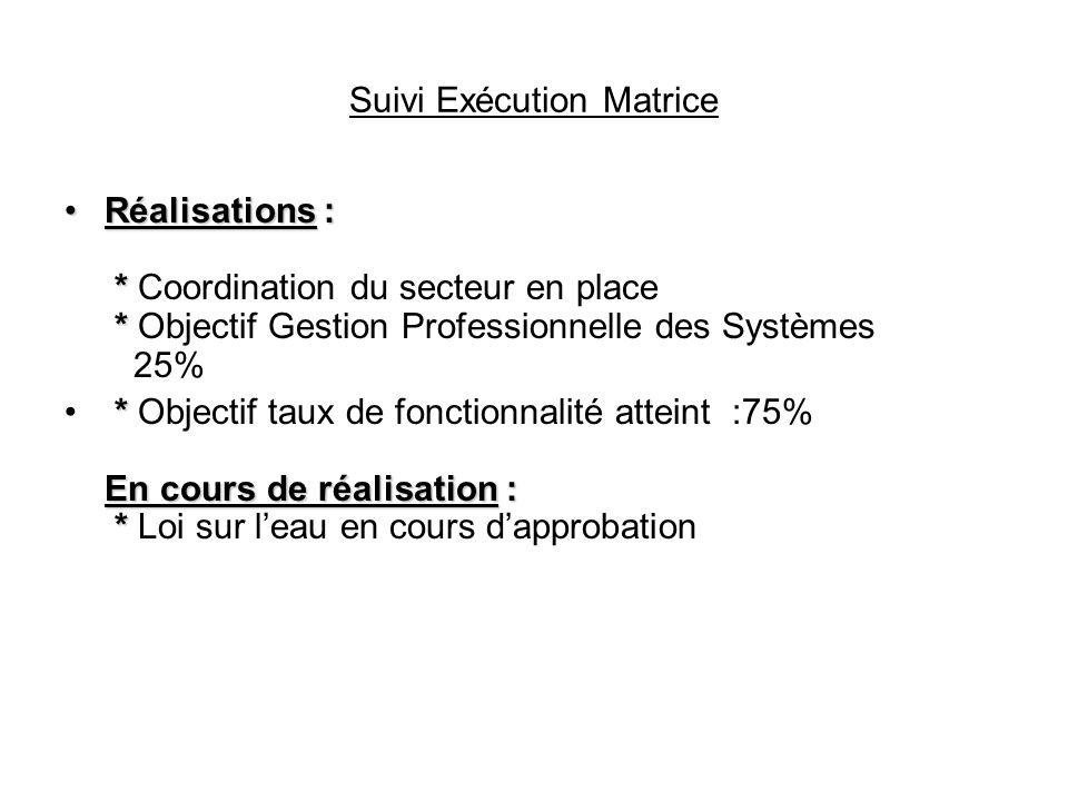 Suivi Exécution Matrice Réalisations : * *Réalisations : * Coordination du secteur en place * Objectif Gestion Professionnelle des Systèmes 25% * En c