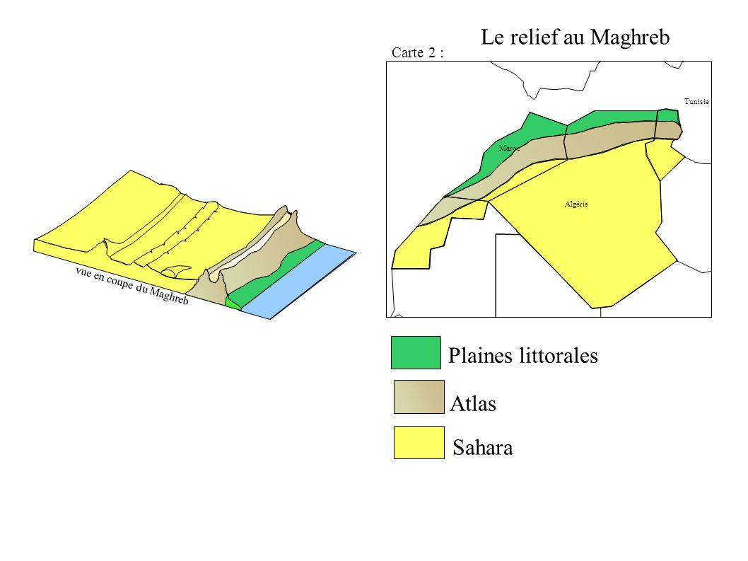 Algérie Maroc Tunisie Plaines littorales Atlas Sahara vue en coupe du Maghreb Carte 2 : Le relief au Maghreb