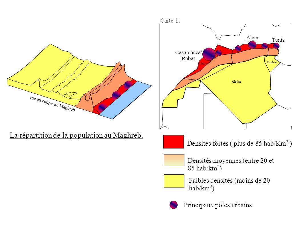 Carte 1: Algérie Maroc Tunisie Faibles densités (moins de 20 hab/km 2 ) Densités fortes ( plus de 85 hab/Km 2 ) Densités moyennes (entre 20 et 85 hab/km 2 ) Principaux pôles urbains vue en coupe du Maghreb La répartition de la population au Maghreb.
