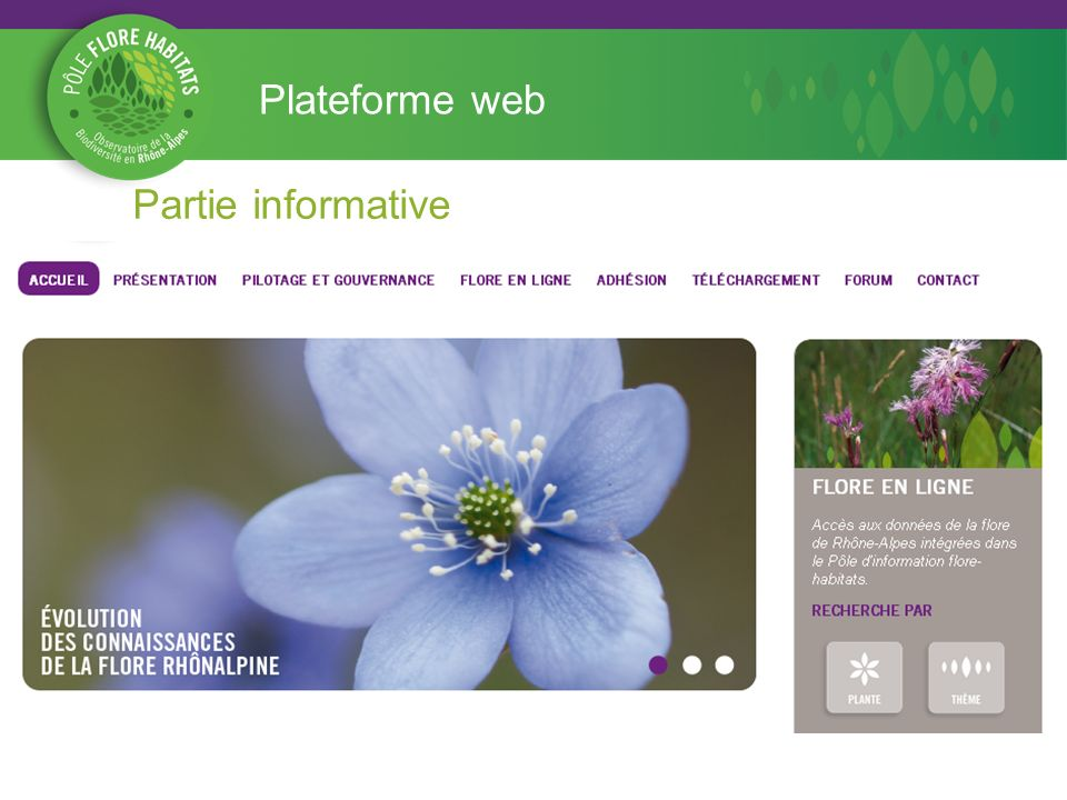 Plateforme web Partie informative