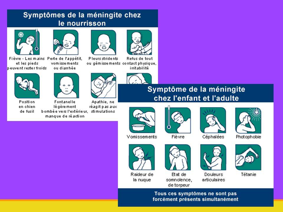 1.3. nature des microorganismes responsables dimanche 18 mai 2014 Méningites 26