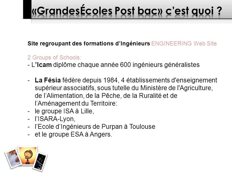 Site regroupant des formations dIngénieurs ENGINEERING Web Site 2 Groups of Schools: - LIcam diplôme chaque année 600 ingénieurs généralistes -La Fésia fédère depuis 1984, 4 établissements d enseignement supérieur associatifs, sous tutelle du Ministère de l Agriculture, de lAlimentation, de la Pêche, de la Ruralité et de lAménagement du Territoire: -le groupe ISA à Lille, -lISARA-Lyon, -lEcole dIngénieurs de Purpan à Toulouse -et le groupe ESA à Angers.