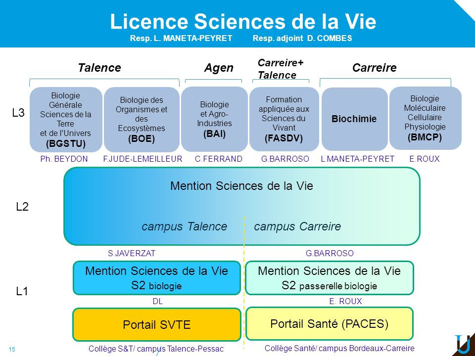 15 Licence Sciences de la Vie L2 L1 Mention Sciences de la Vie campus Talence campus Carreire Portail SVTE Portail Santé (PACES) Mention Sciences de l