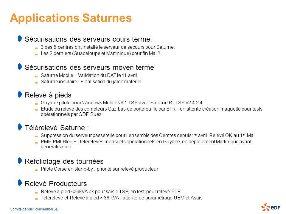 Applications Saturnes Sécurisations des serveurs cours terme: 3 des 5 centres ont installé le serveur de secours pour Saturne. Les 2 derniers (Guadelo