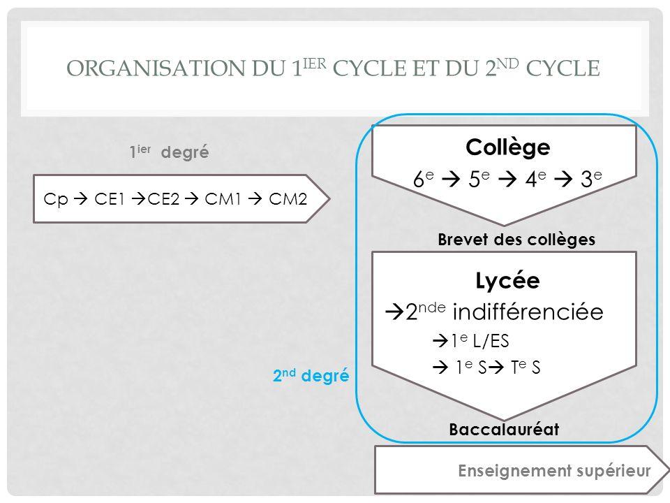 ORGANISATION DU 1 IER CYCLE ET DU 2 ND CYCLE Cp CE1 CE2 CM1 CM2 Collège 6 e 5 e 4 e 3 e Lycée 2 nde indifférenciée 1 e L/ES 1 e S T e S 2 nd degré 1 i