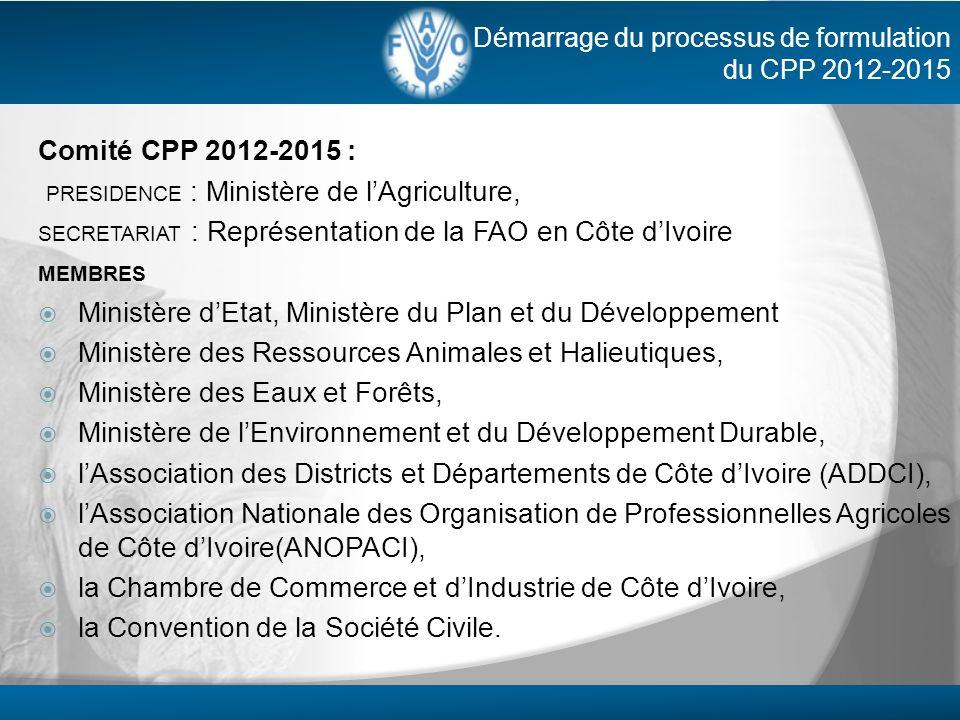 Démarrage du processus de formulation du CPP 2012-2015 Comité CPP 2012-2015 : PRESIDENCE : Ministère de lAgriculture, SECRETARIAT : Représentation de