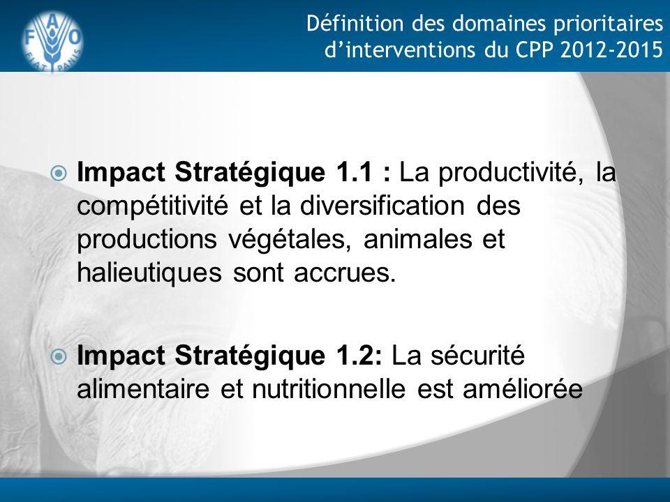 Définition des domaines prioritaires dinterventions du CPP 2012-2015 Impact Stratégique 1.1 : La productivité, la compétitivité et la diversification