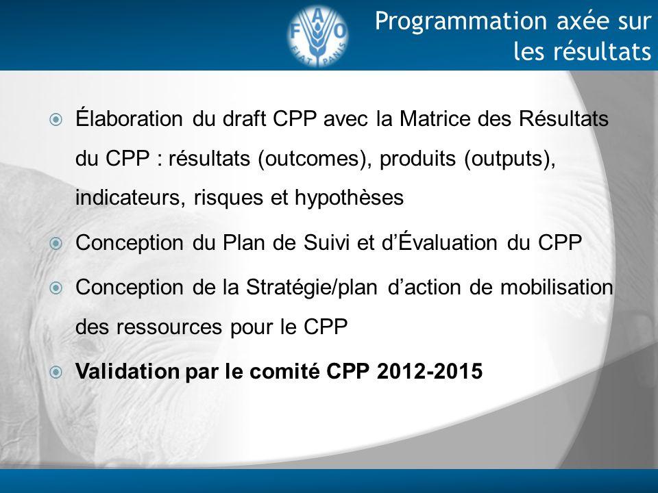 Élaboration du draft CPP avec la Matrice des Résultats du CPP : résultats (outcomes), produits (outputs), indicateurs, risques et hypothèses Conceptio