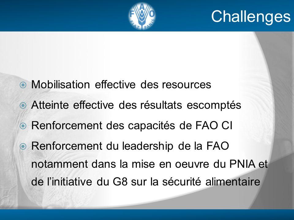 Mobilisation effective des resources Atteinte effective des résultats escomptés Renforcement des capacités de FAO CI Renforcement du leadership de la