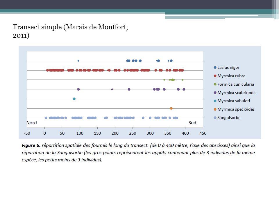 Transect simple (Marais de Montfort, 2011)