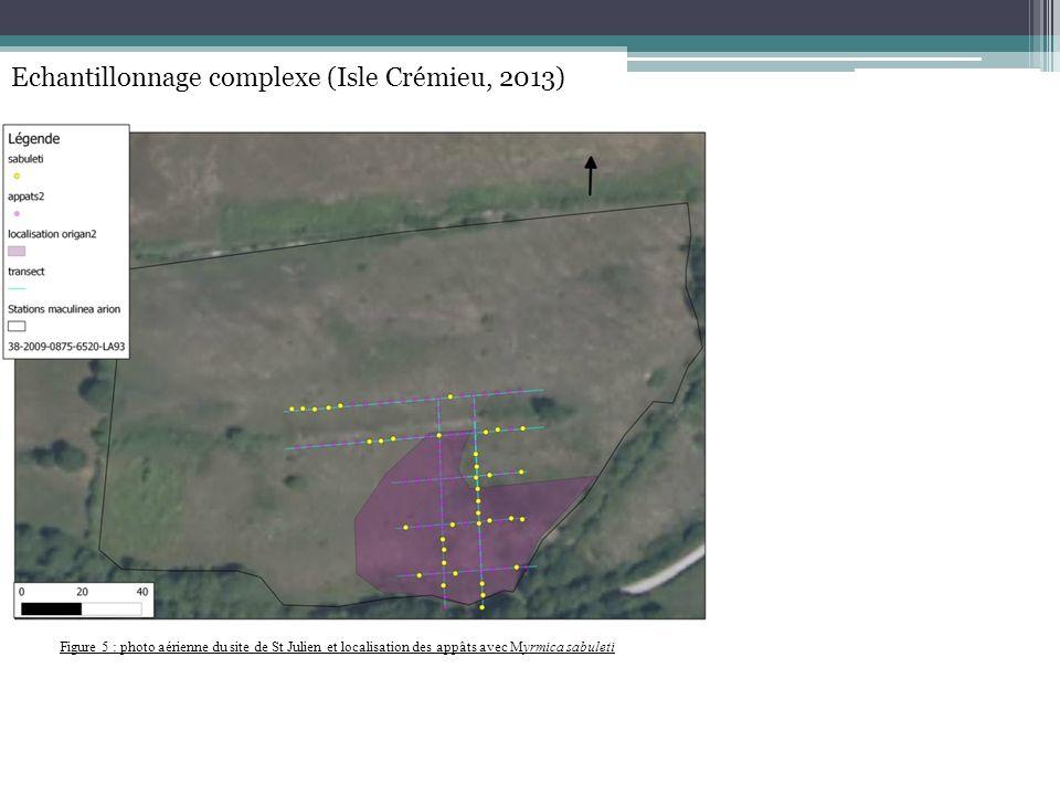 Figure 5 : photo aérienne du site de St Julien et localisation des appâts avec Myrmica sabuleti Echantillonnage complexe (Isle Crémieu, 2013)