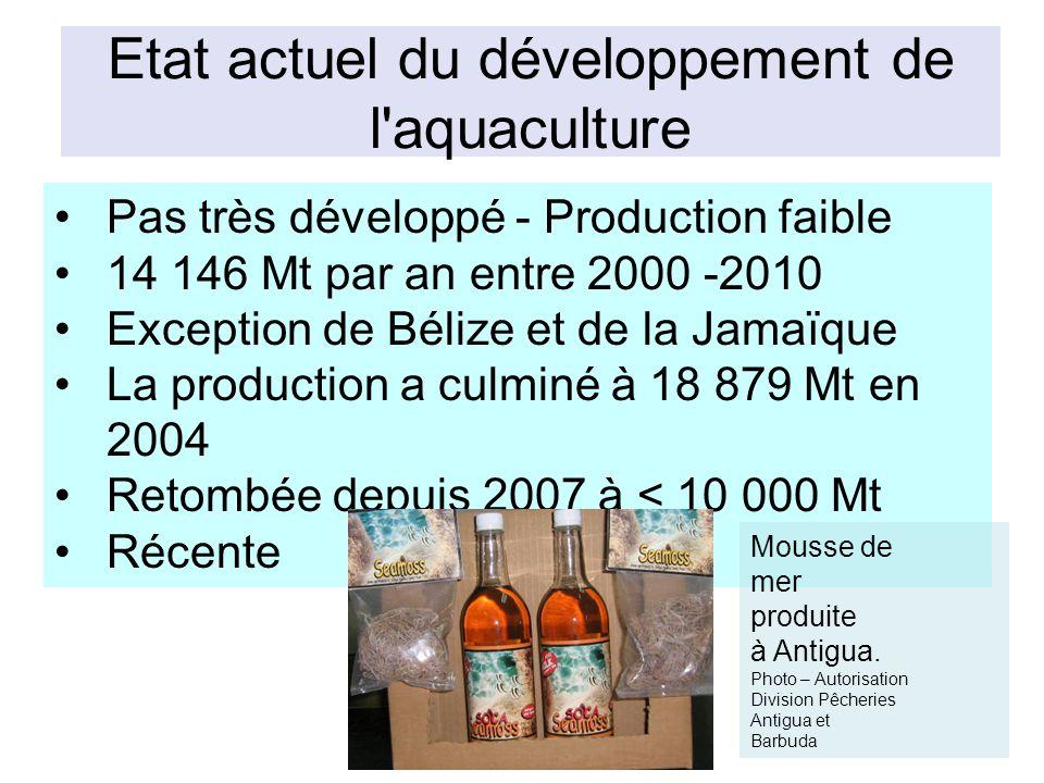 Etat actuel du développement de l aquaculture Pas très développé - Production faible 14 146 Mt par an entre 2000 -2010 Exception de Bélize et de la Jamaïque La production a culminé à 18 879 Mt en 2004 Retombée depuis 2007 à < 10 000 Mt Récente Mousse de mer produite à Antigua.