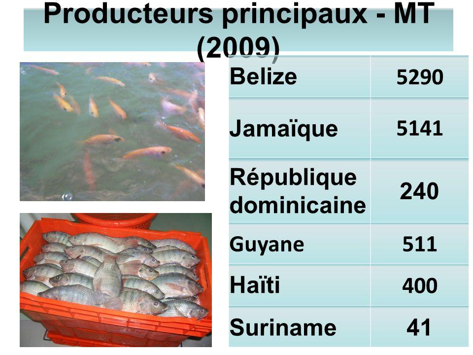 Producteurs principaux - MT (2009) Belize 5290 Jamaïque 5141 République dominicaine 240 Guyane511 Haïti 400 Suriname41