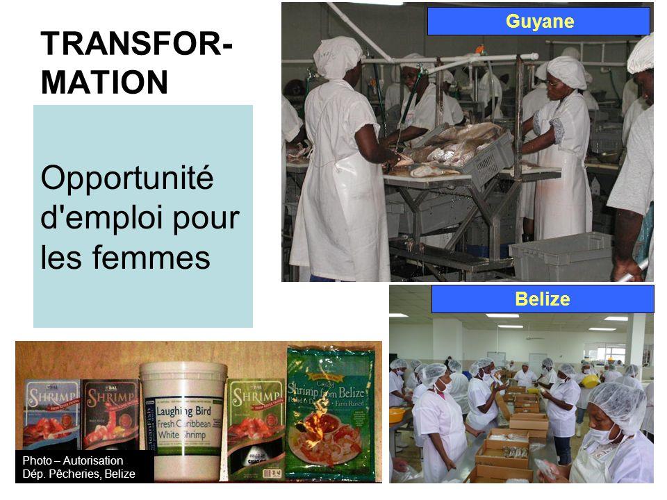 TRANSFOR- MATION Opportunité d emploi pour les femmes Guyane Belize Photo – Autorisation Dép.