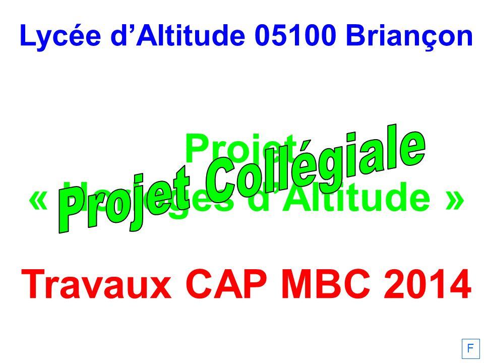 Lycée dAltitude 05100 Briançon Projet « Horloges dAltitude » Travaux CAP MBC 2014 F