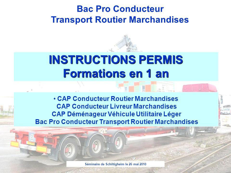 Séminaire de Schiltigheim le 26 mai 2010 Bac Pro Conducteur Transport Routier Marchandises INSTRUCTIONS PERMIS Formations en 1 an CAP Conducteur Routi