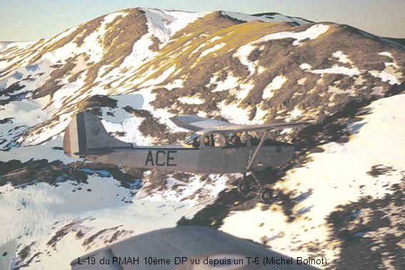 L-19 du PMAH 10ème DP vu depuis un T-6 (Michel Boinot)
