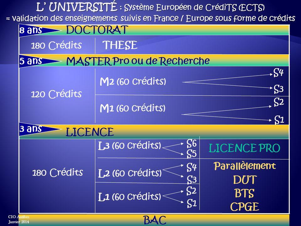 L UNIVERSITÉ : Système Européen de CrédiTS (ECTS) = validation des enseignements suivis en France / Europe sous forme de crédits BAC S6 L3 (60 crédits