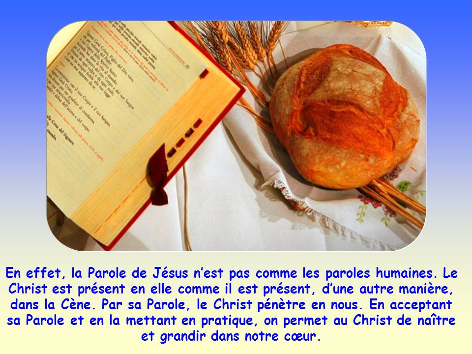 Selon Jésus, il y a un moyen pour être pur : sa Parole. Cette Parole, les disciples lont écoutée, ils y ont adhéré. Elle les a purifiés.