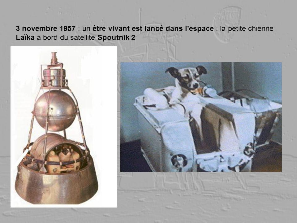 3 novembre 1957 : un être vivant est lancé dans l'espace : la petite chienne Laïka à bord du satellite Spoutnik 2