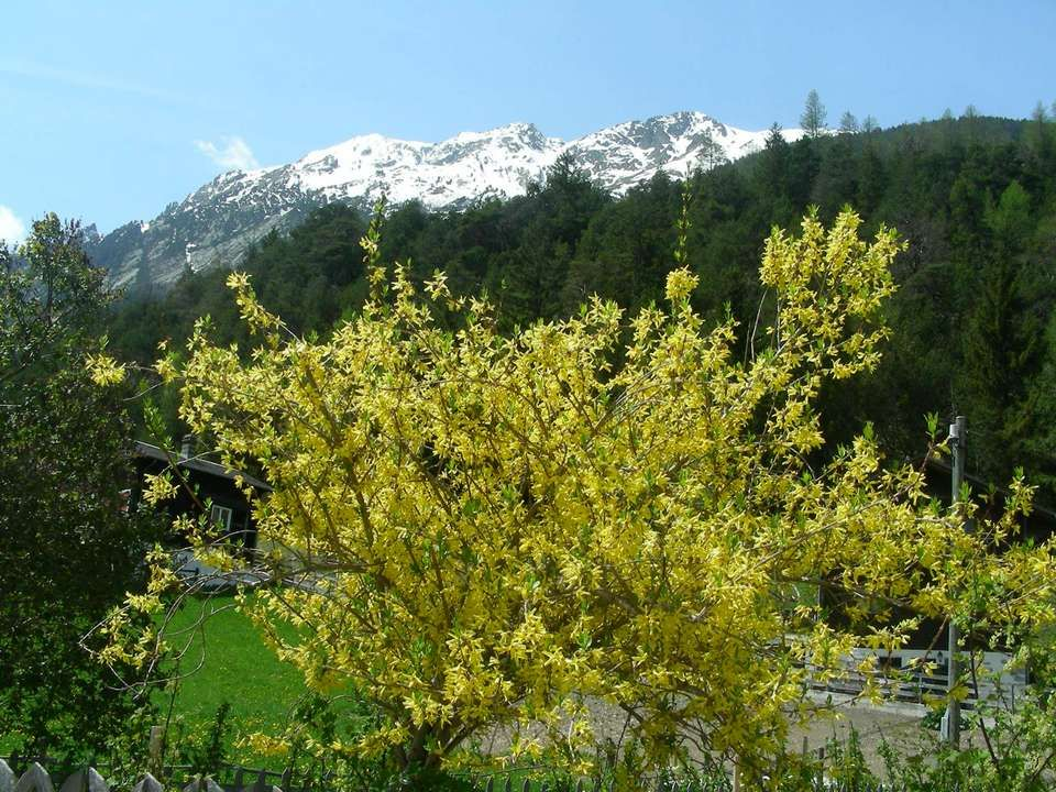 Avril En avril, ne te découvre pas d'un fil, En mai, fais ce qu'il te plaît ! Avril,fait la fleur, Mai, en a l'honneur. Pluie le jour de Sainte-Opport