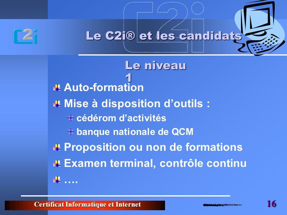 Certificat Informatique et Internet 16 Le C2i® et les candidats Auto-formation Mise à disposition doutils : cédérom dactivités banque nationale de QCM Proposition ou non de formations Examen terminal, contrôle continu ….