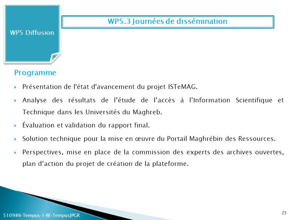 WP5 Diffusion Programme Présentation de l'état d'avancement du projet ISTeMAG. Analyse des résultats de létude de laccès à lInformation Scientifique e