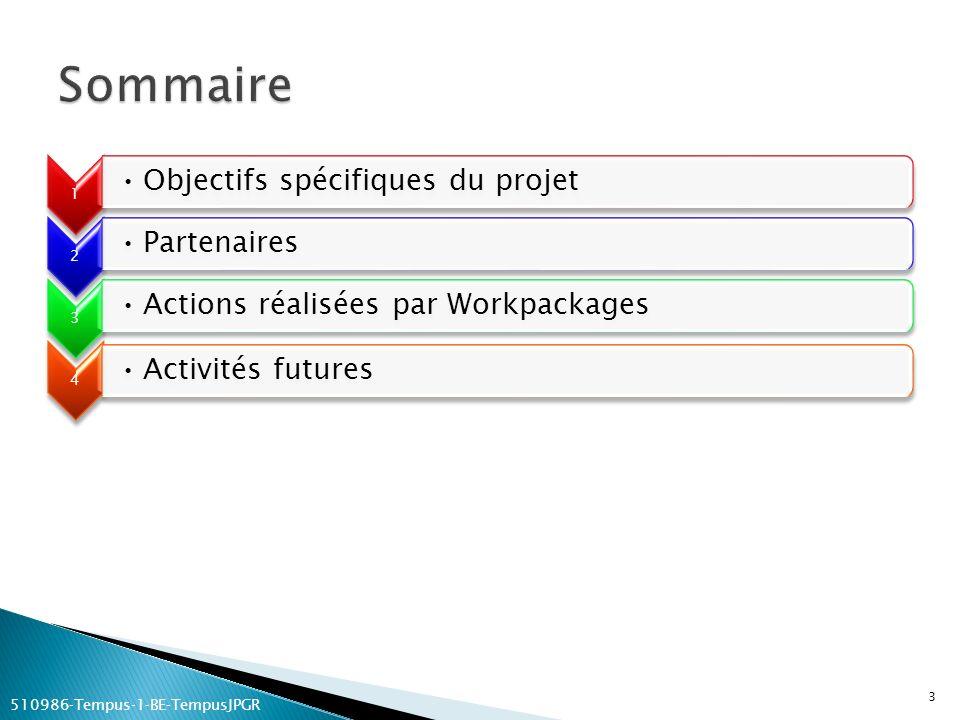 1 Objectifs spécifiques du projet 2 Partenaires 3 Actions réalisées par Workpackages 4 Activités futures 3 510986Tempus1BETempusJPGR