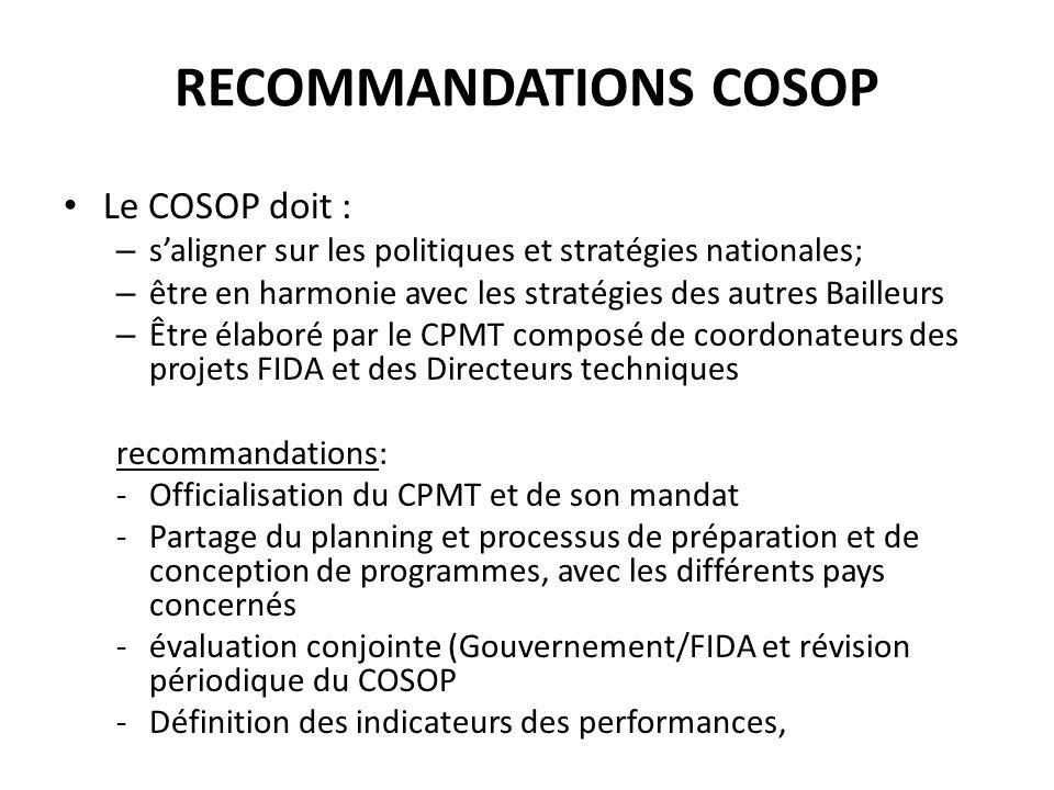 RECOMMMANDATIONS PREPARATION PROGRAMME Coordonnateurs membres de la mission de formulation des programmes pour capitaliser les expériences et les acquis en terme dexécution des programmes.
